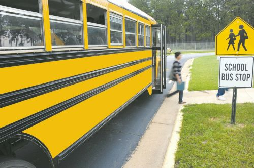 schoolbus vehicle bus