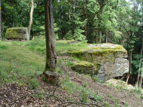 schornsteinfelsen palatinate forest germany