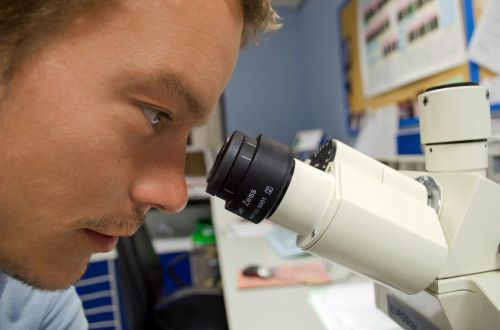 Scientist And Microscope