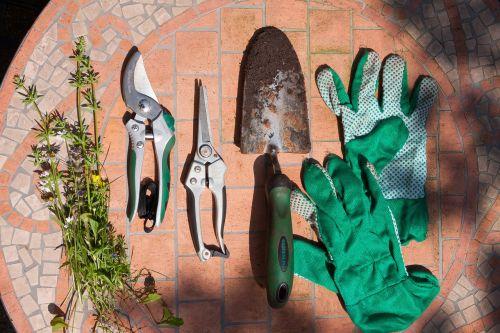 scissors pruning shears flowers shovel