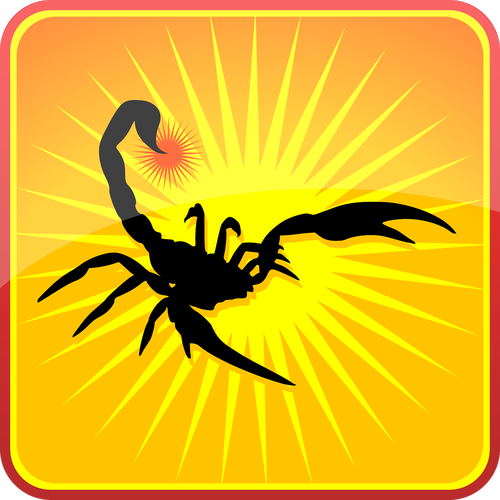 scorpion  silhouette  insects