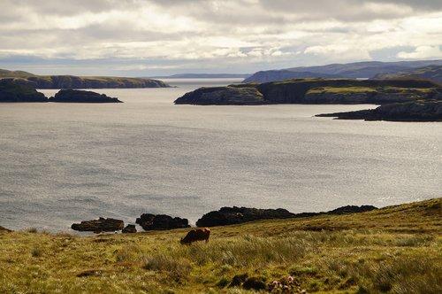 scotland  north of scotland  upstream