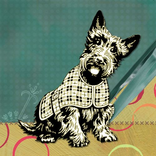 scottish dog modern