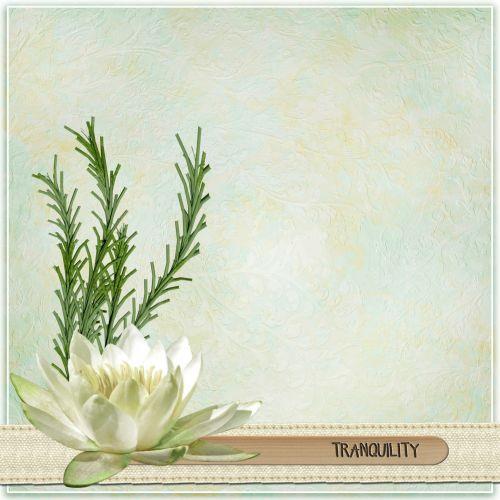 Scrapbook Tranquility Lotus Fantasy