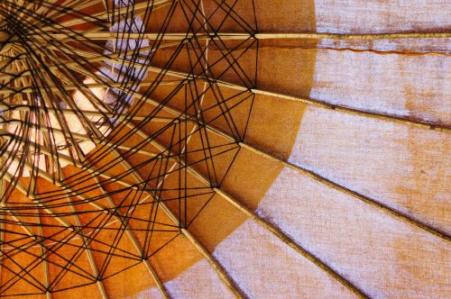 screen parasol from the bottom