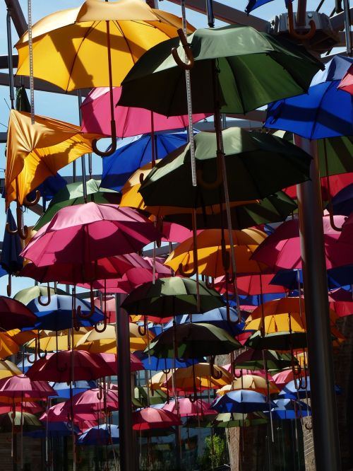 screen umbrella colorful