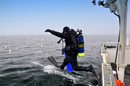 scuba diver boat leaping