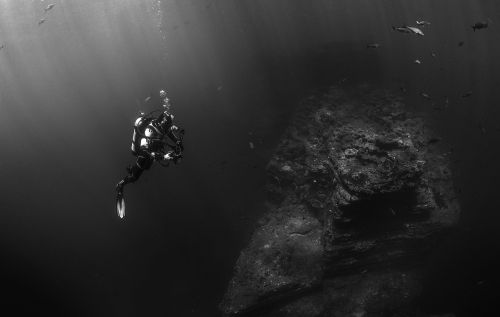 scuba diver diver diving