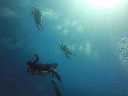 scuba diving diving ocean