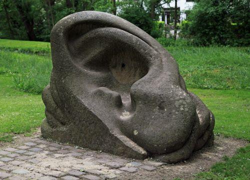 sculpture auricle ear