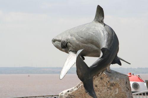 grey reef shark sculpture shark