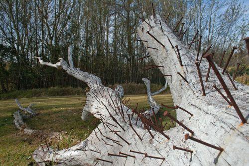 sculpture modern tree trunk
