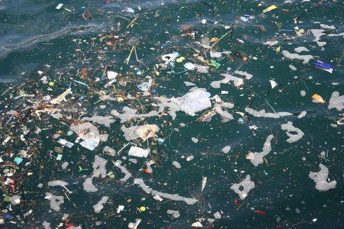 sea oats garbage