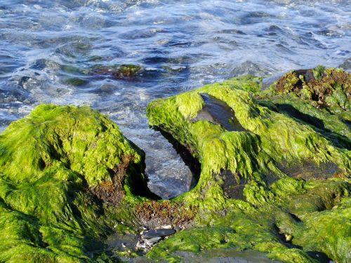 sea beach erosion