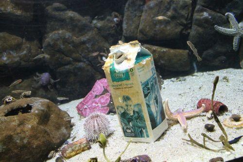 sea beneath the surface waste