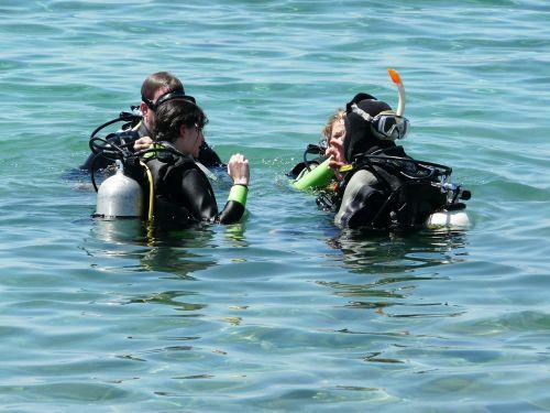 sea divers diving