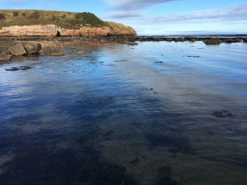 sea scotland beach