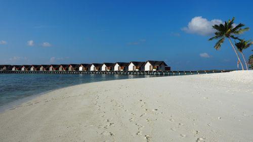 sea exotica beach