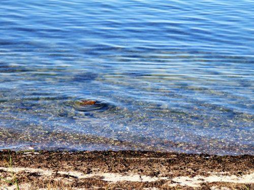 sea lake water