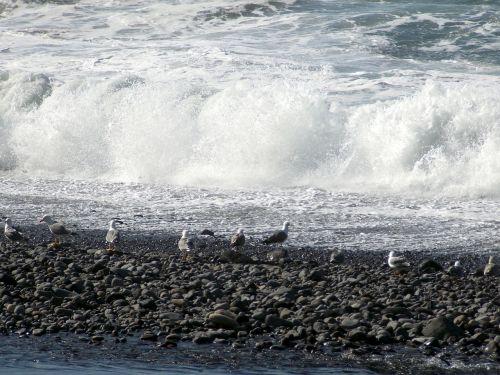 sea wave spray