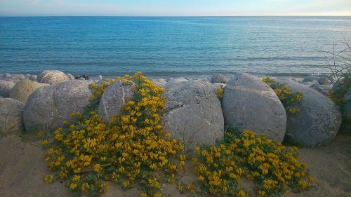 sea beach ibiza