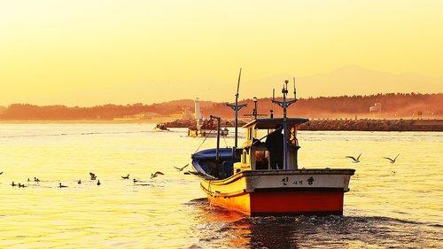sea  ship  dawn