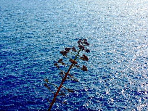 sea  mediterranean  cost