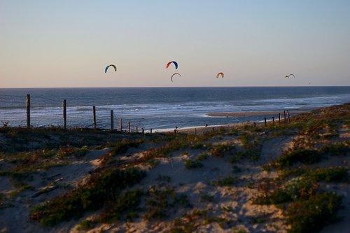 sea  ocean  kites