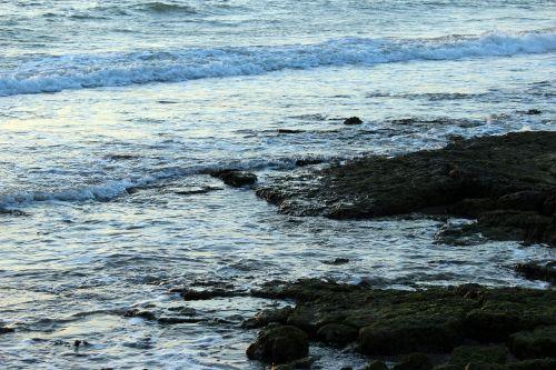 sea water surf
