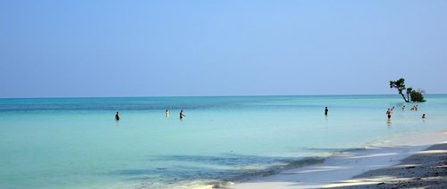 sea  beach  shallow
