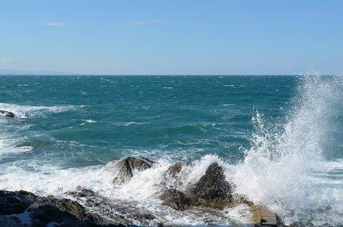 sea  beach  collioure
