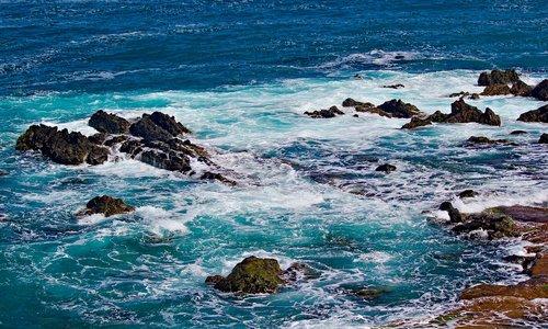 sea  coast  waves