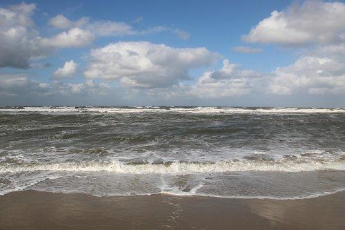 sea  beach  summer