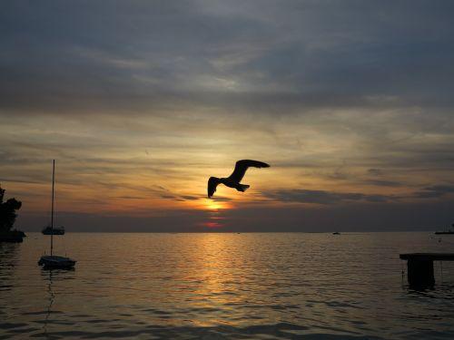 sea croatia holidays