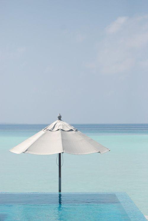 sea parasol blue