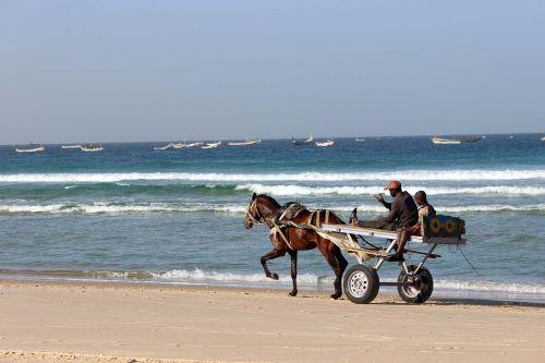 sea beach senegal