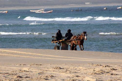 sea beach cart
