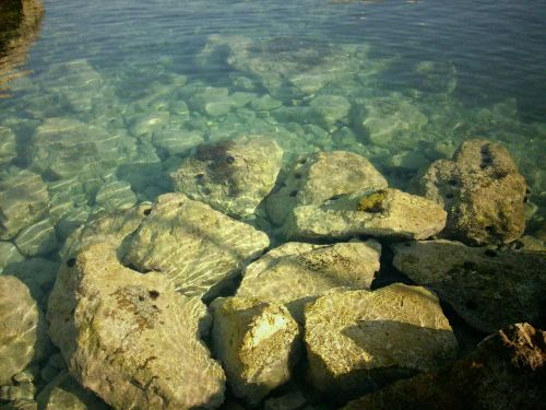sea clear water