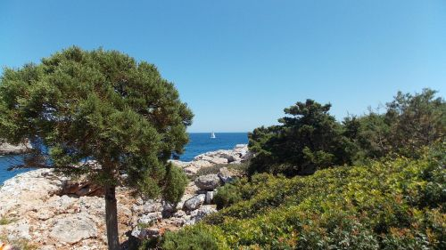 sea holiday outlook