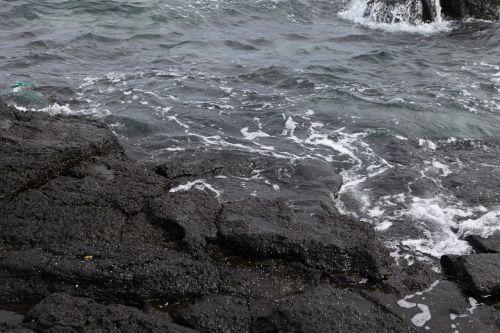 sea basalt jeju island
