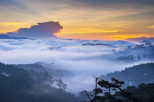 sea mist scenery the morning