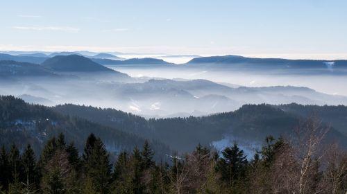 sea of fog nebellandschaft black forest