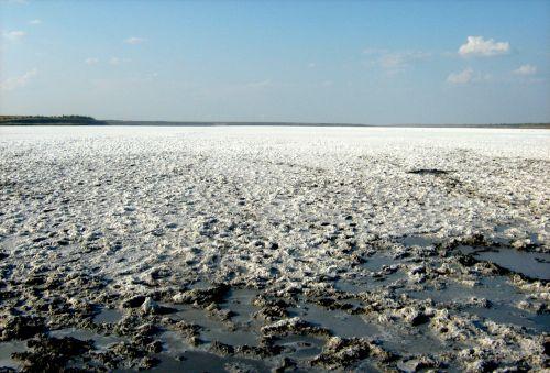 Sea Salt. Reserve. Resort.