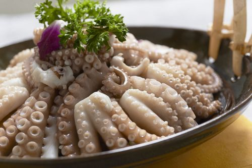seafood octopus squid to be