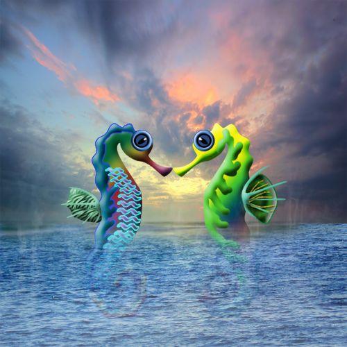 seahorse water sea