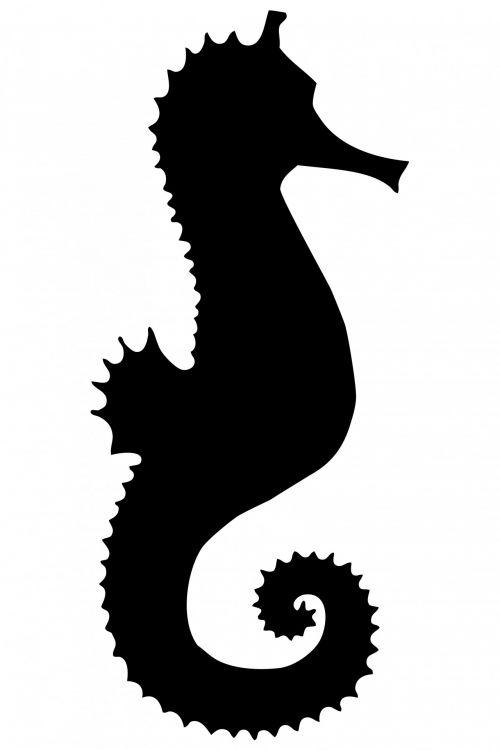 Seahorse Black Silhouette