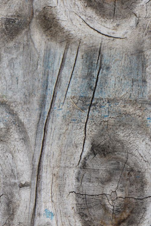 Seamless Tiling Knotty Wood