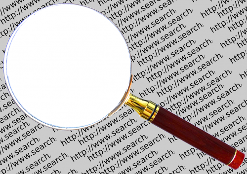 search engine search web search