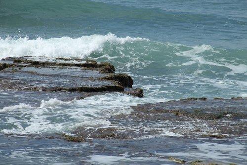 seashore  haifa  israel