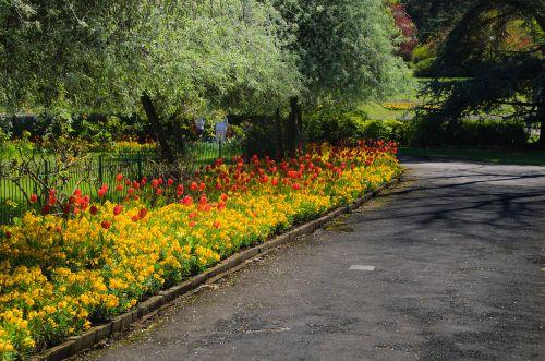 parkas, baldai, stendas, atsipalaidavimas, kelionė, sezonas, pavasaris, vasara, gėlė, gėlės, medis, medžiai, žalias, žolė, sezonas parke